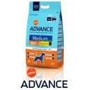 Advance Medium Adult