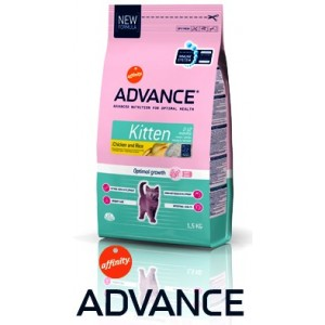 /vendita/30-88-thickbox/advance-kitten.jpg